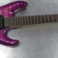 Schecter Guitar